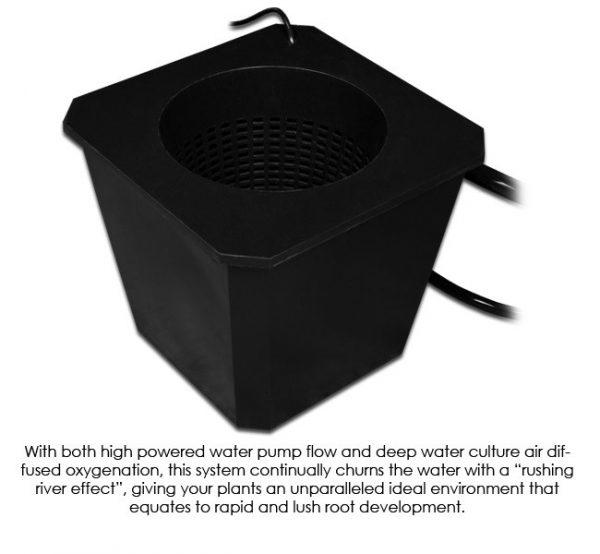 BubbleFlow Bucket 6 Site DWC System