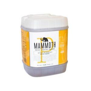 Mammoth P 5 Gallon