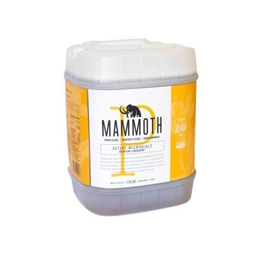 Mammoth P 1 Gallon