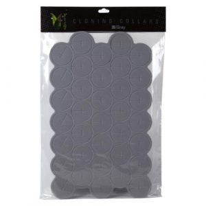 EZ-Clone Colored Cloning Collars Gray (35/Bag)
