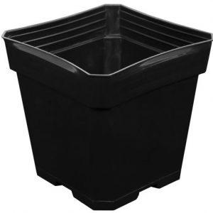 Gro Pro Black Plastic Pot 5.5 in x 5.5 in x 5.75 in (200/Cs)