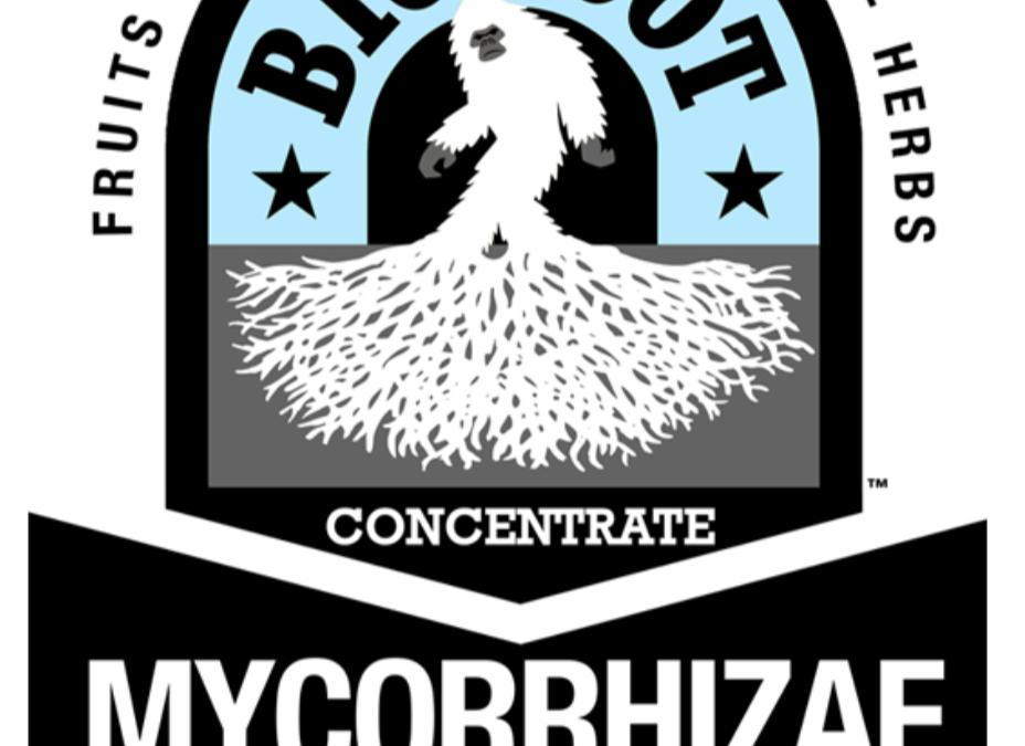 Big Foot Mycorrhizae Concentrate 32 oz