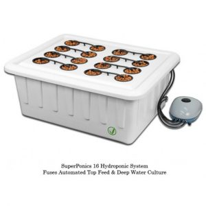 Superponic 16 Site Hydroponic System