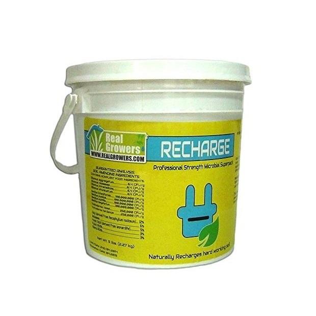 Recharge 5 LB